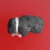 วัวธนูสะกดอาถรรพ์ ครูบาเดช สำนักสงฆ์ป่าช้าบ้านใหม่รัตนโกสินทร์ ลำปาง