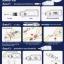 เครื่องเจาะวัดน้ำตาลในเลือด รุ่น Terumo Medfisafe EX รหัส MEI08 thumbnail 2