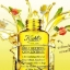 Kiehl's Daily Reviving Concentrate thumbnail 6