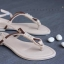 ลดล้างสต๊อก รองเท้าส้นเตี้ย C62035-APR [สีแอปริคอท]